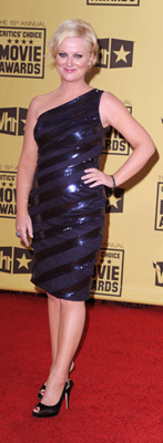 Amy Poehler Wears Tadashi to 2010 Critics' Choice Awards