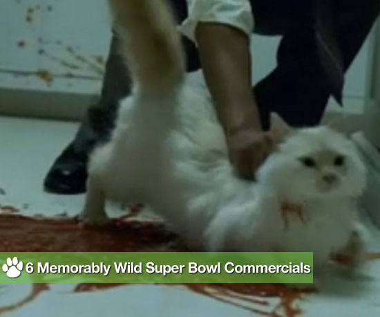 6 Memorably Wild Super Bowl Commercials
