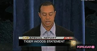 Tiger Woods Defends Elin Nordegren