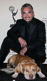 Cesar Millan's Dog Died