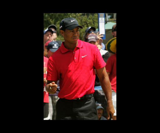 Tiger Woods In 3D?