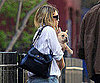 Slide Photo of Ashley Olsen With a French Bulldog