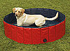 Dog Pool: Spoiled Sweet or Spoiled Rotten?