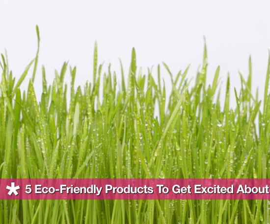 Earth-Friendly Products Worth Getting Excited About