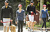 Pictures of Emily Blunt and John Krasinski Walking Their Dog in LA