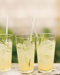 Tarragon Lemonade Recipe