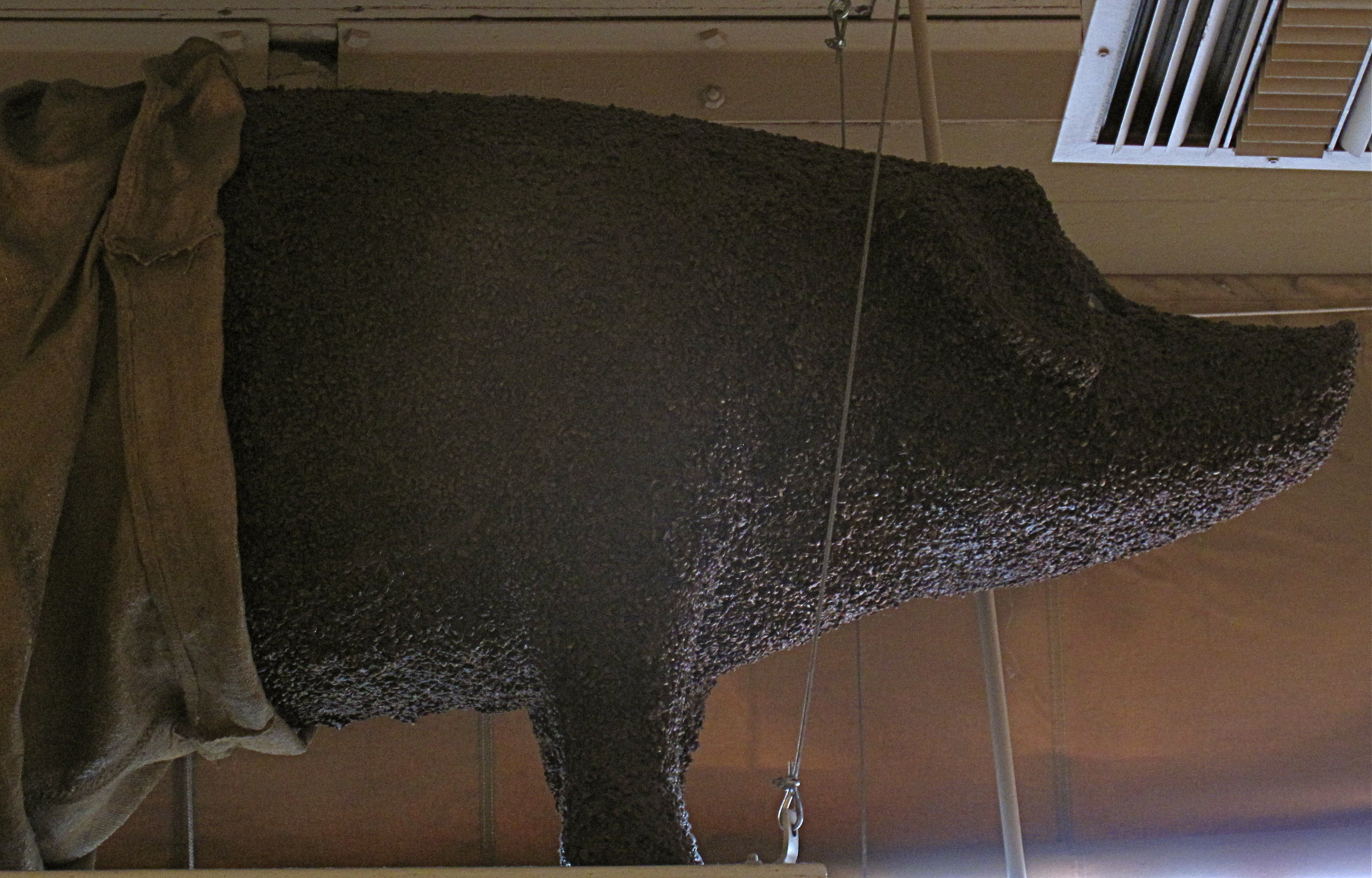 Atop the entrance sits a pig — which bears a strong likeness to Rachel, Pike Place Market&#039;s unofficial bronze mascot — made entirely out of roasted coffee beans.