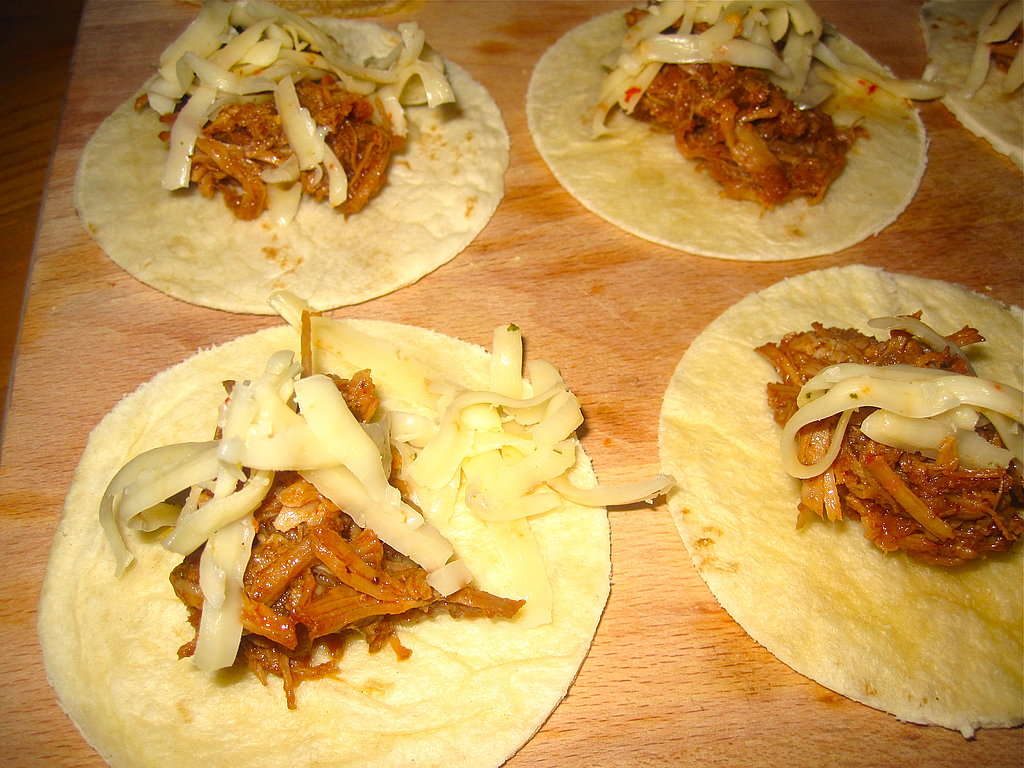 Slow Cooker Carnitas Recipe 2010-04-29 15:09:04
