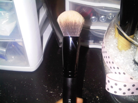 Sephora Professonial Mineral Powder Brush #45