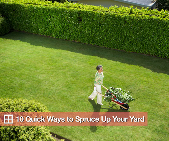 Quick And Easy Backyard Ideas : What?s Your Reaction? Thanks for your reaction Don?t forget to