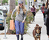 Slide Picture of Amanda Seyfried Walking Her Dog in LA