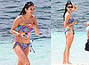 Pictures of Nina Dobrev in a Bikini