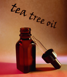 Tea Tree Oil Quiz