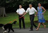 Follow the Leader? Bo Takes the President For a Walk