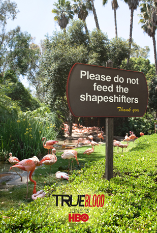 """Please Do Not Feed the Shapeshifters"""