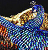Laurel Roth Peacocks Exhibition Pics