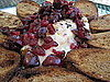 Grilled Brie With Fresh Cherries