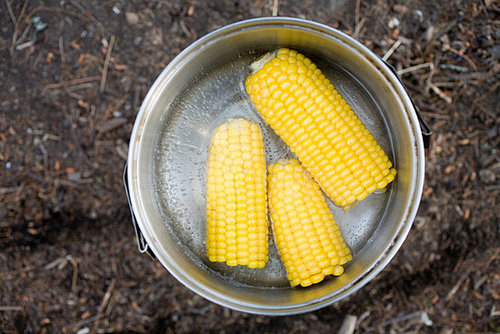 How Do You Feel About Corn on the Cob?