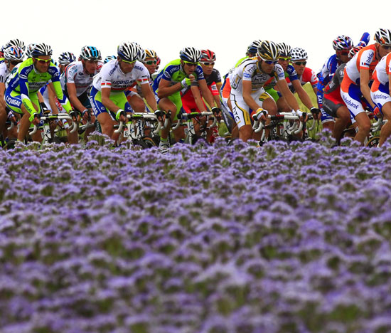 Wimbledon Winners, Tour de France, and World Cup News
