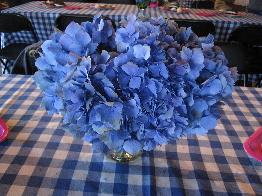 I loved the way the blue hydrangeas looked against the blue checked tablecloth.