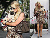 Pictures of Paris Hilton Shopping With New Pug Mugsy