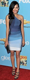 Glee's Naya Rivera Wears Herve Leger