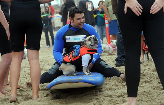 2010 Surf City Surf Dog Competition in Huntington Beach