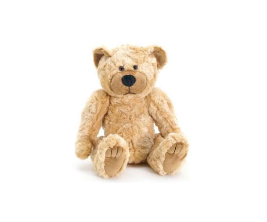 Teddy Bear Hidden Color Camera ($205)