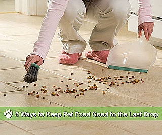 How to Prevent Pet Food From Becoming Stale