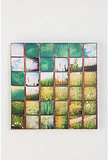Grasses Wall Art By Patrick Winfield