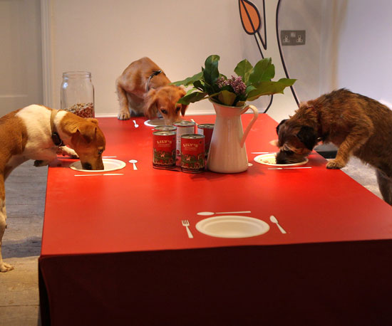 Pop Up and Pop In! Lily's Kitchen Doggy Diner Sprouts in London