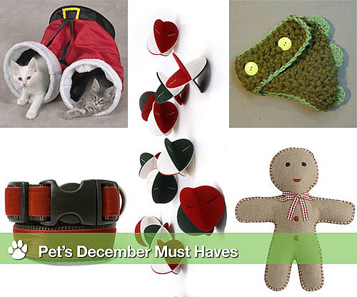 Cute Christmas Ideas For Pets