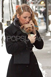Pictures of Blake Lively on Gossip Girl Set With Dog