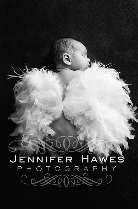 Feathery Wings ($38)