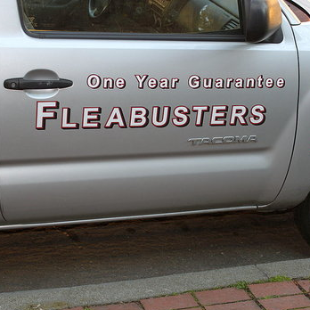 Fleabusters Gallery