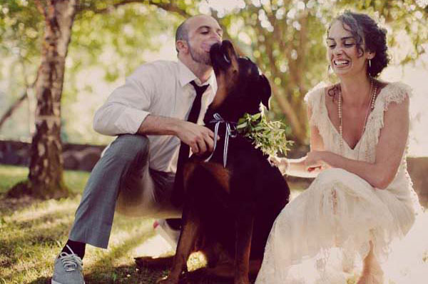 This foliage-adorned dog looks like he's having a grand ol' time at this wedding.  Photo by Traci Griffin Photography