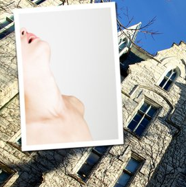 Sex Act Performed in Class at Northwestern University