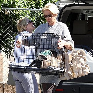 Pictures of Katherine Heigl's Dramatic New Haircut in LA