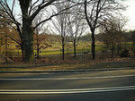 Prospect Park Path