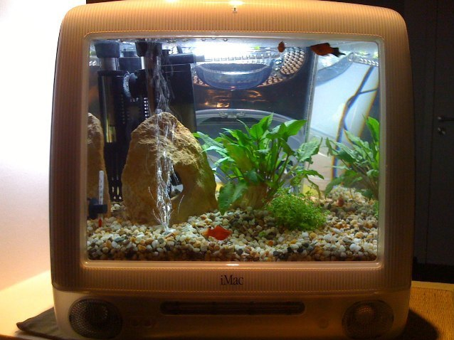 Share Your Penchant For Tech With Your Fish: Macquarium