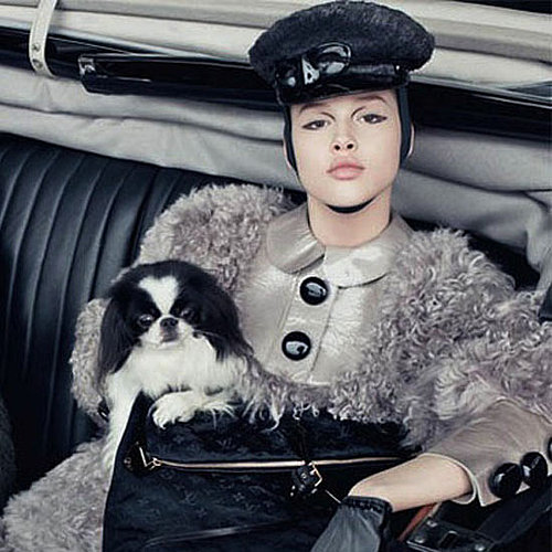 Louis Vuitton Fall 2011 Campaign: Do You Love The Latest A/W Campaign Shot by Steven Meisel, Starring Daphne Groeneveld?