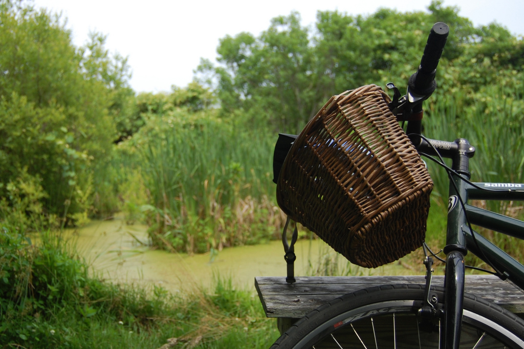 Beyond the Basket: Toting Your Gear While Biking
