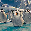 Happy Feet 2 Trailer With Voices of Elijah Wood, Brad Pitt, Matt Damon, Sofia Vergara