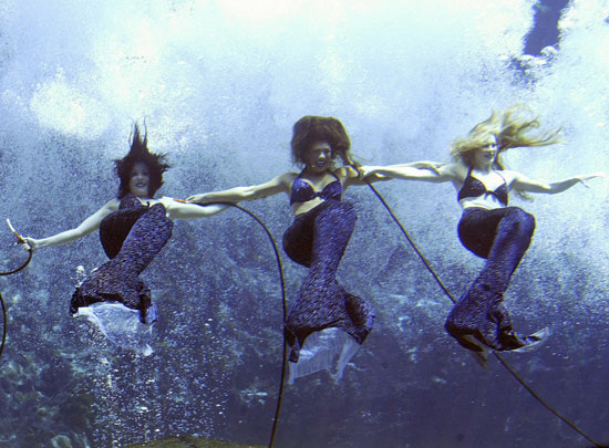 Weeki Wachee Springs Mermaids