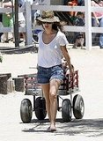 Rachel Bilson pulled a cart with her sister in it.
