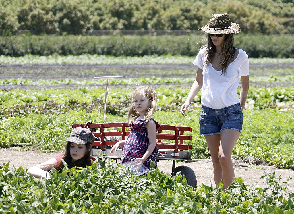 Rachel Bilson and her sisters picked fresh produce.