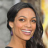 Rosario Dawson's Makeup Look at Zookeeper Premiere