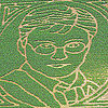 Harry Potter Corn Maze