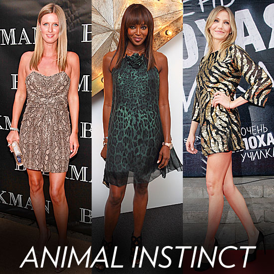 Hear Them Roar: Animal Prints Dominate Celeb Summer Looks