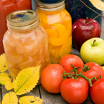 Food Preserving Guidelines